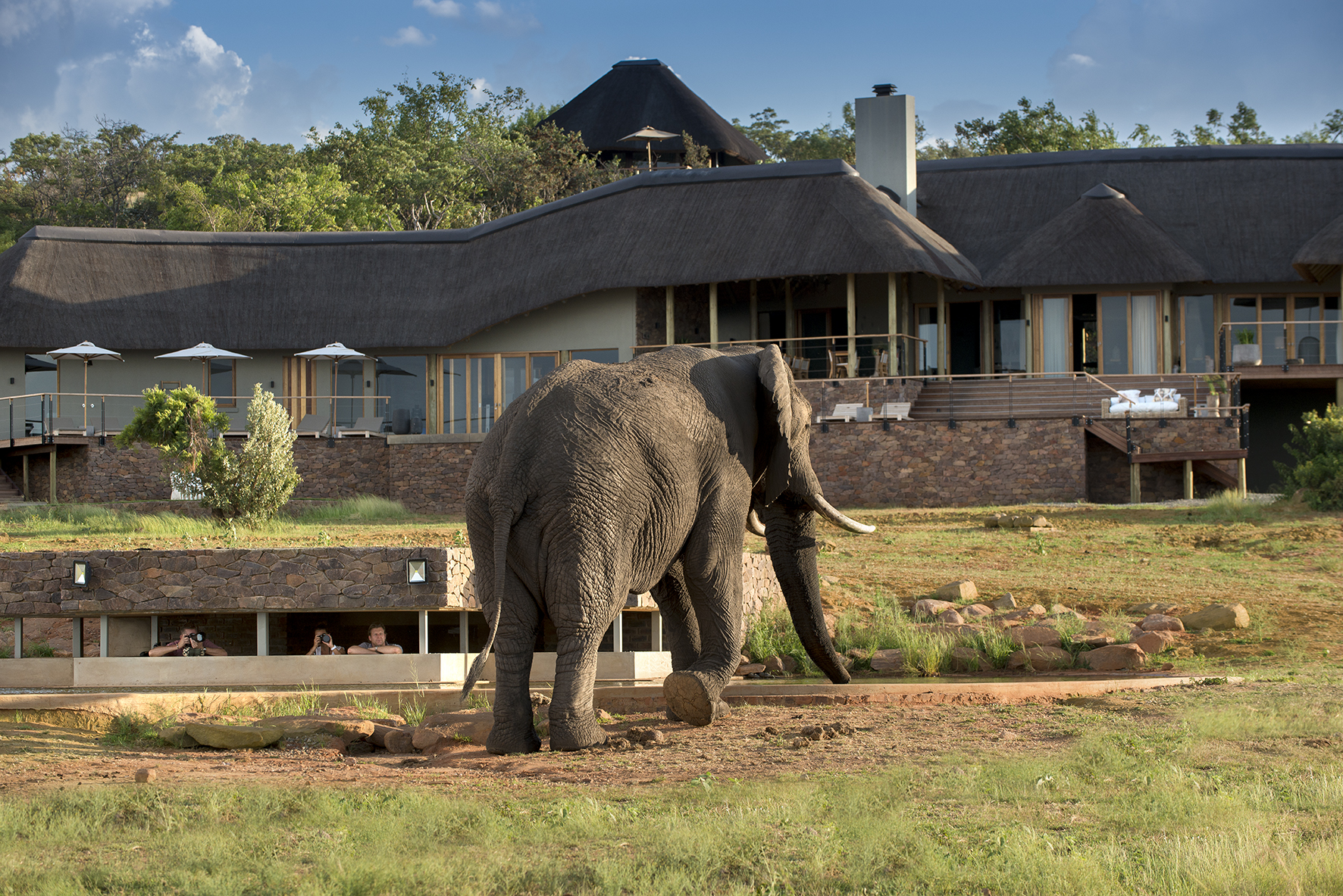 WIN a magical getaway at Mhondoro Safari Lodge & Villa in Limpopo, valued at over R26 000!