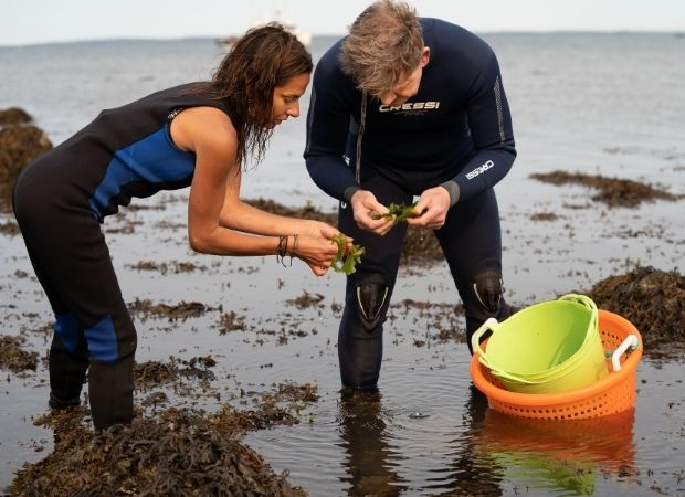 Gordan Ramsay heads to Maine – the global lobster capital